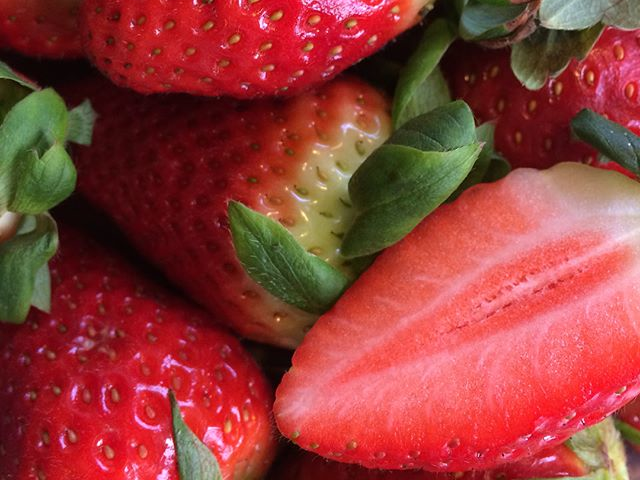 vita jordgubbar frö